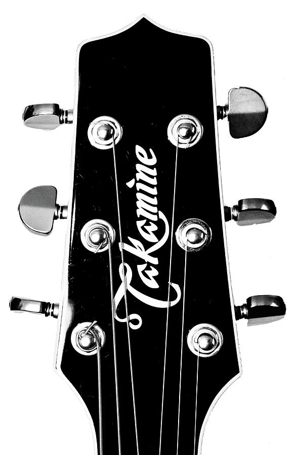 Takamine Headstock by Christopher Cutter