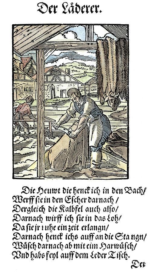 Tanner, 1568 by Granger