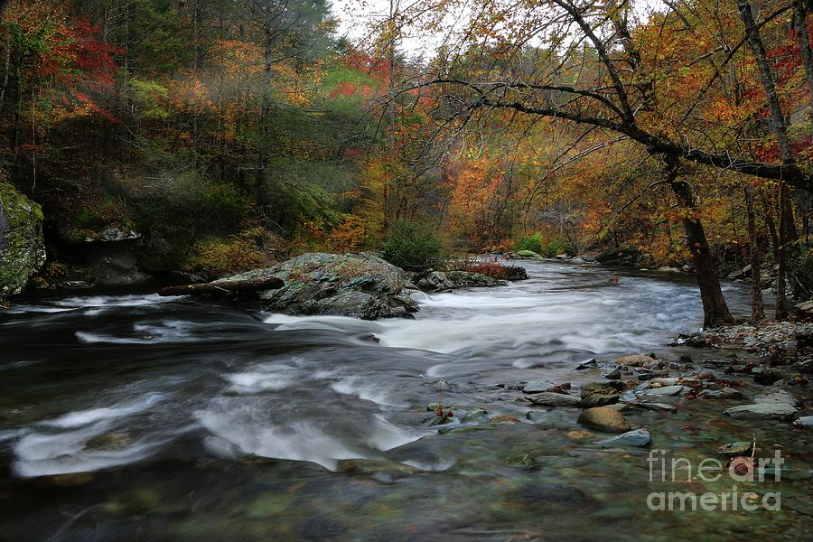 Tellico River Tennessee 2 by Rick Lipscomb