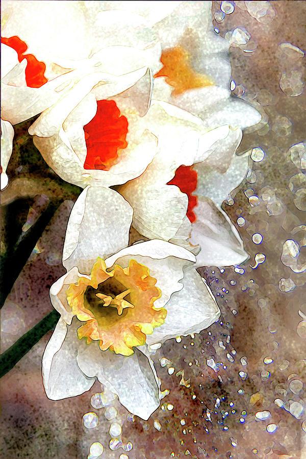 Daffodils Digital Art - Thankful by Vanessa Thomas