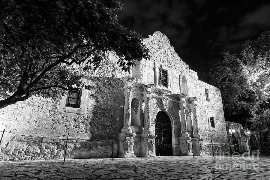 The Alamo by Brian Jannsen