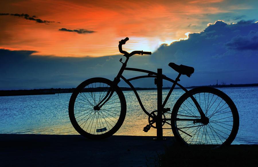 The Bike by Anna Yanev