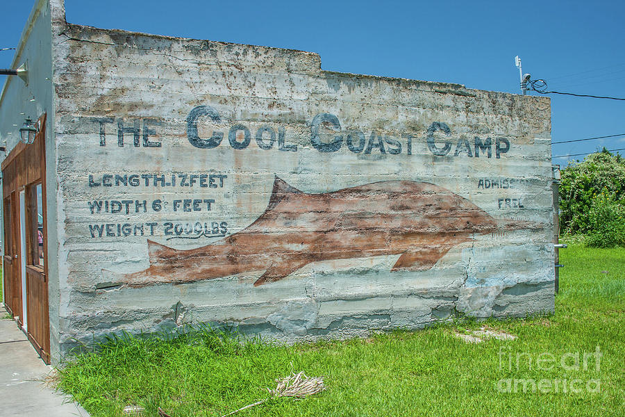 The Cool Coast camp by Tony Baca