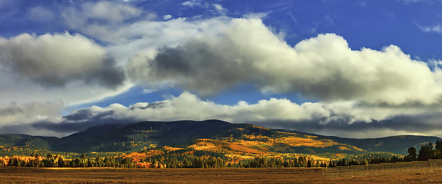 The Hills Are Alive by Rick Furmanek