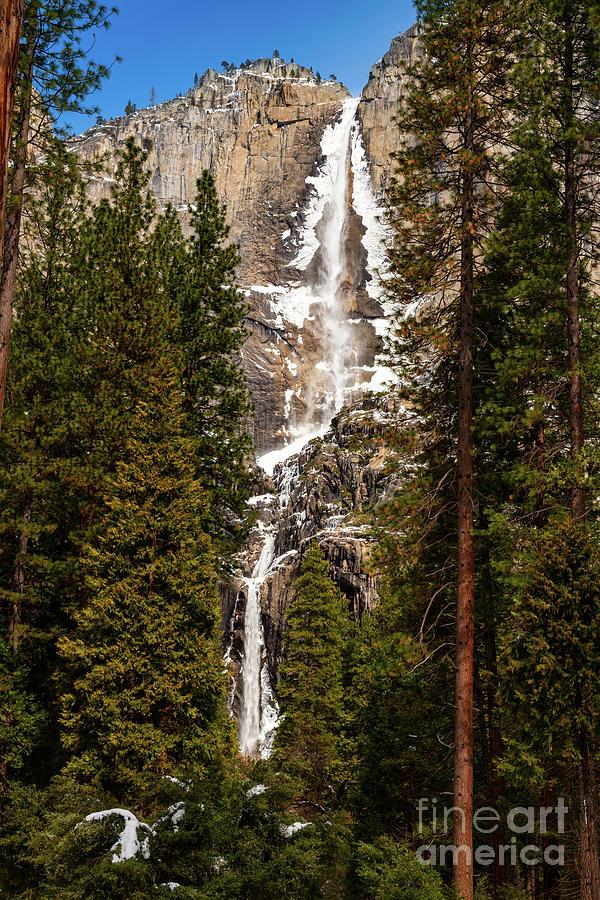 The Iconic Yosemite Falls In The Winter. Photograph