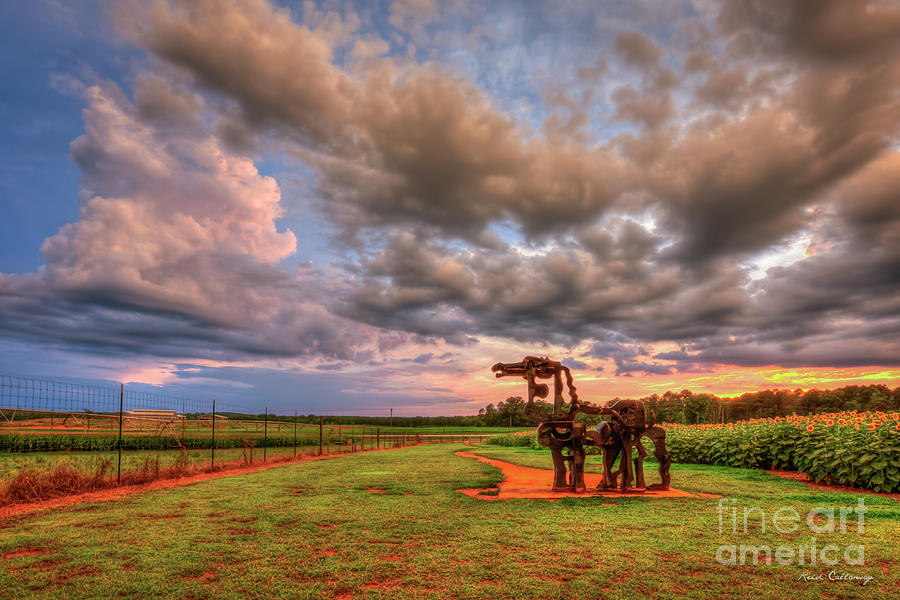 Majestic Iron Horse Sunset 8 U G A Iron Horse Farm Landscape Art by Reid Callaway