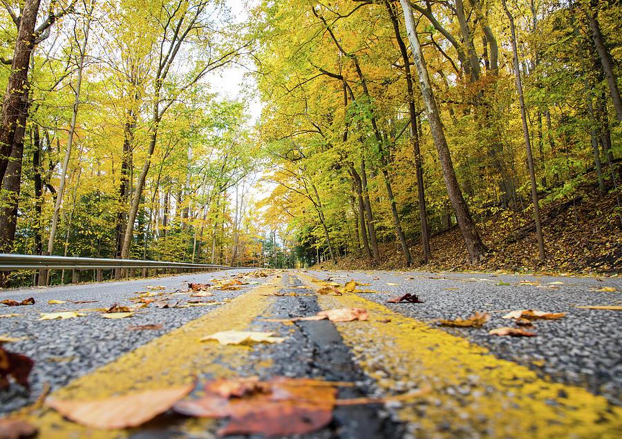 The Road Ahead by Charlie Jones