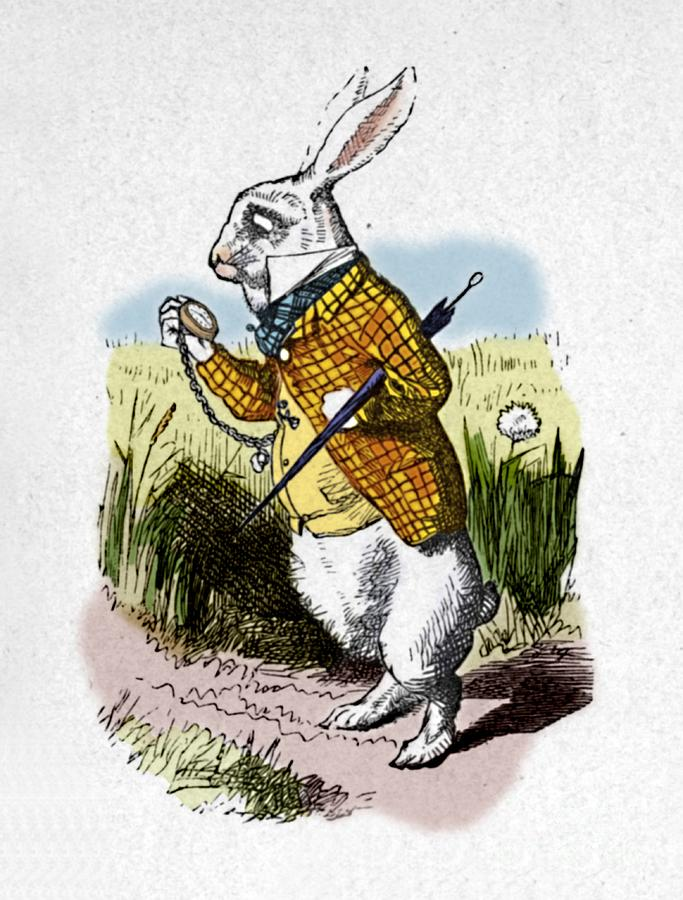 The White Rabbit With A Watch 1889 Drawing by Print Collector
