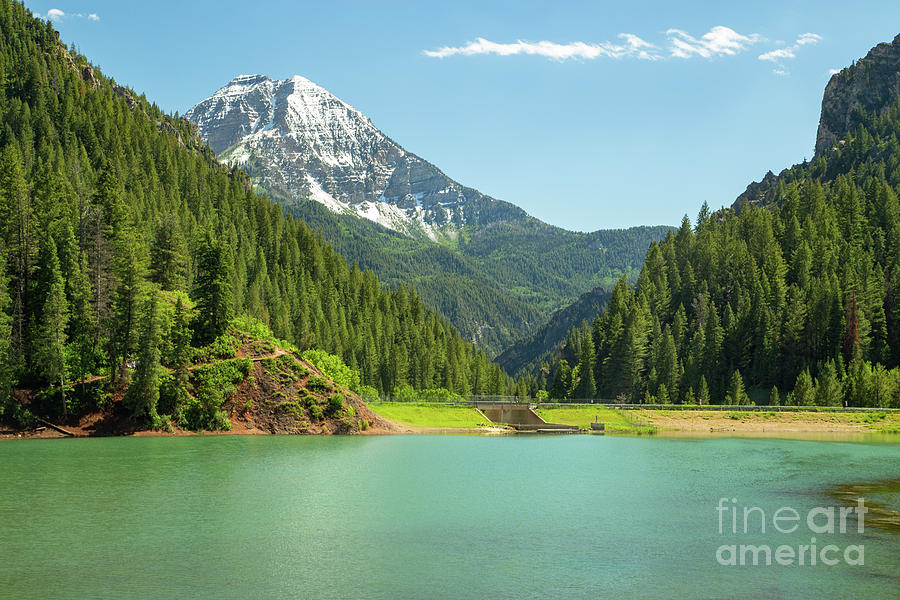 Tibble Lake by Roxie Crouch