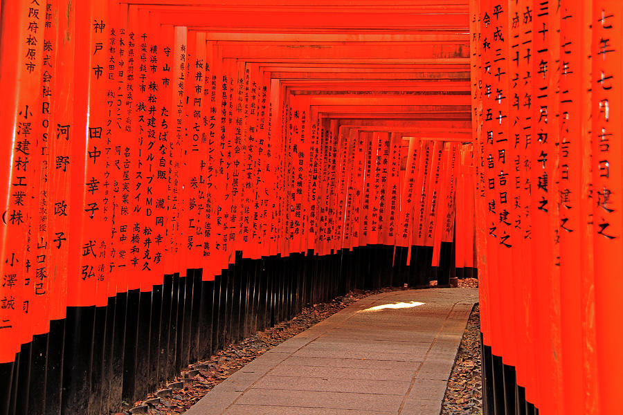 Torii Gates - Fushimi Inari-taisha Shrine - Kyoto, Japan by Richard Krebs
