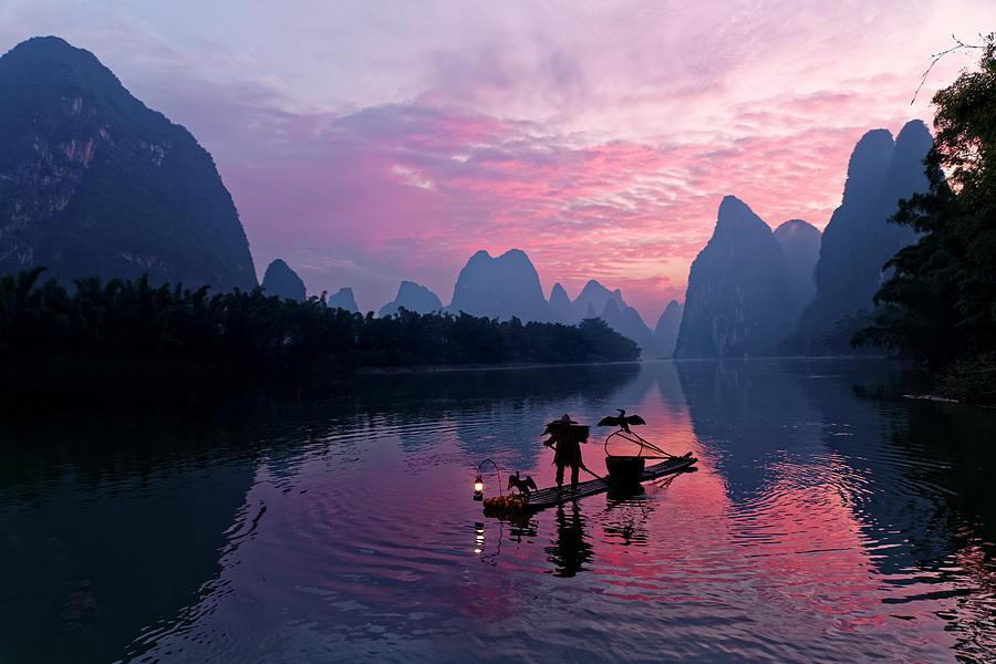 Adam Jones Photograph - Traditional Chinese Cormorant by Adam Jones