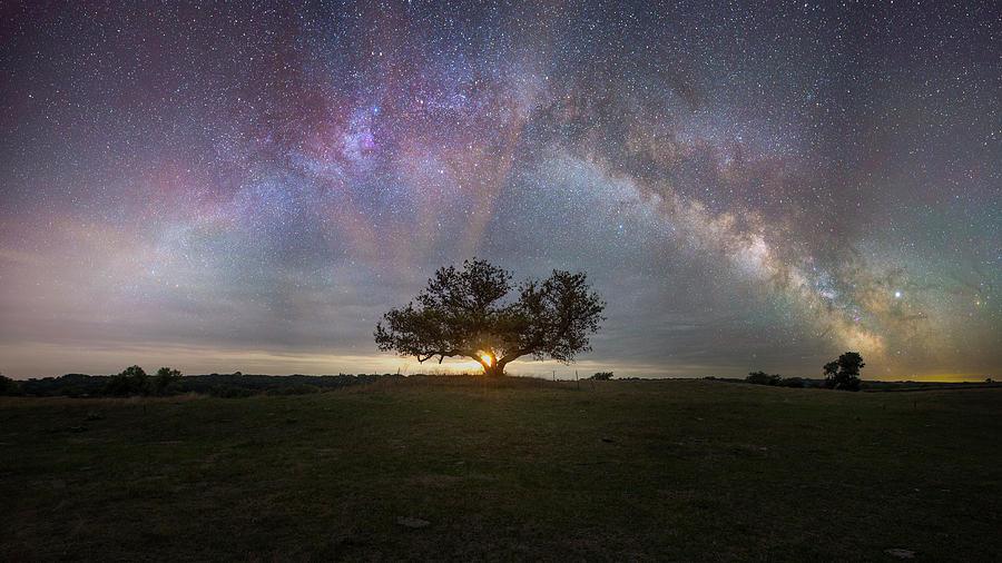 Milky Way Photograph - Tree Of Light  by Aaron J Groen