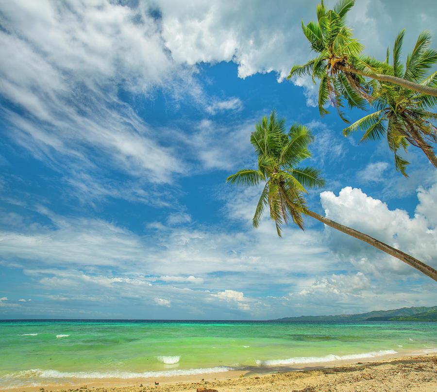 Mp Photograph - Tropical Beach, Siquijor Island by Tim Fitzharris