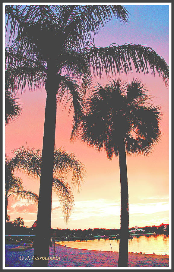 Tropical Beach Sunset with Palm Tree Silhouettes by A Gurmankin