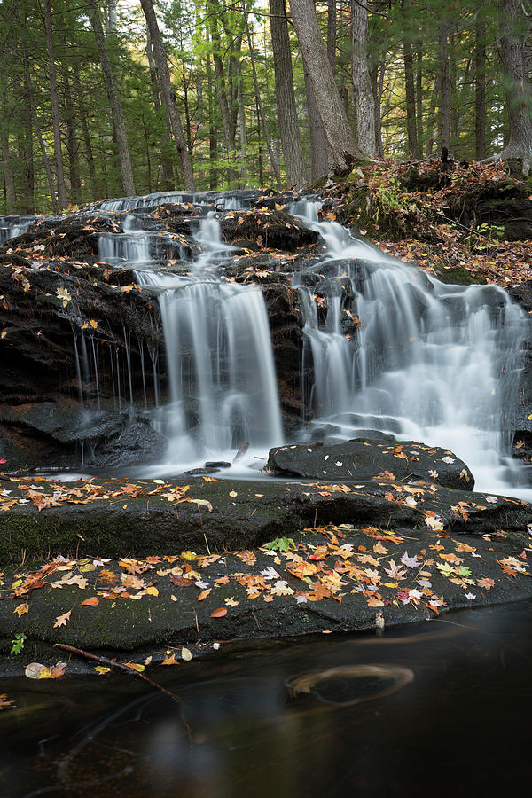 Tucker Brook Falls, New Hampshire by Greg Parsons