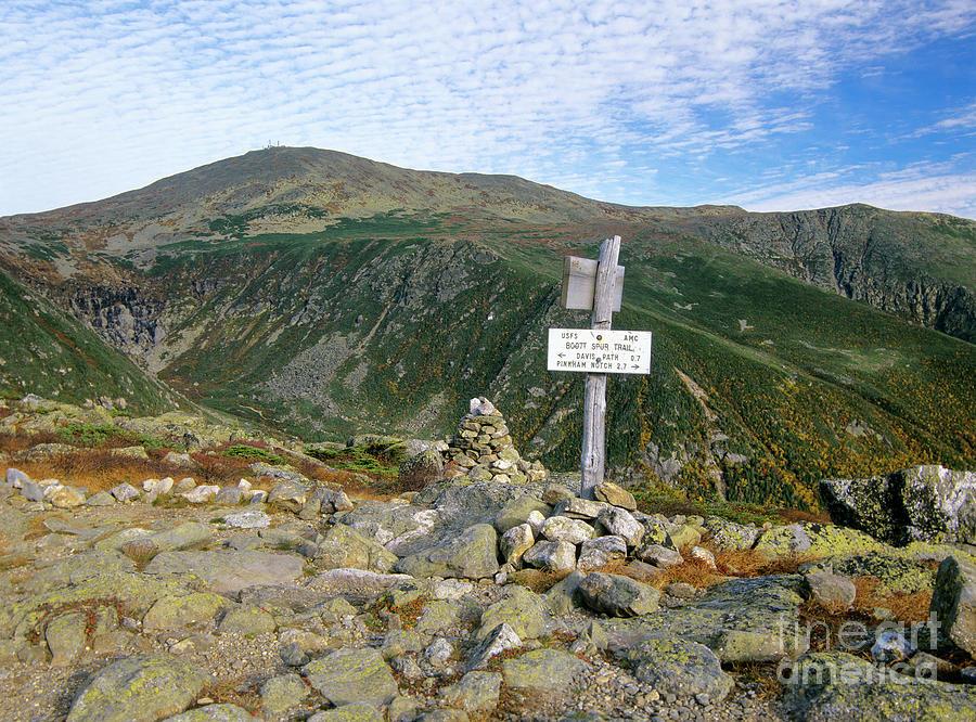 Tuckerman Ravine - Mt. Washington by Erin Paul Donovan