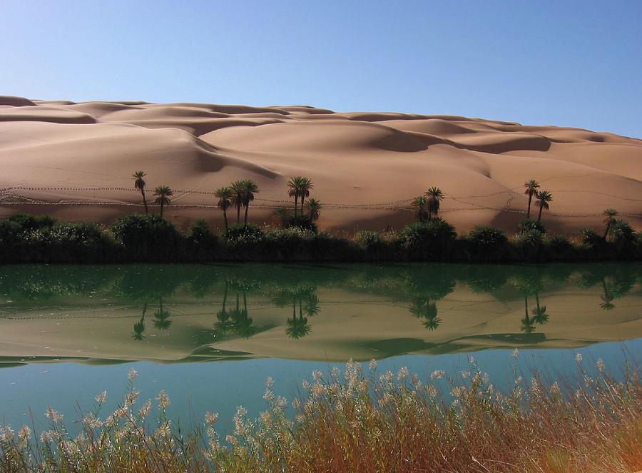 Umm Al-maa, Libya Photograph by Joe & Clair Carnegie / Libyan Soup
