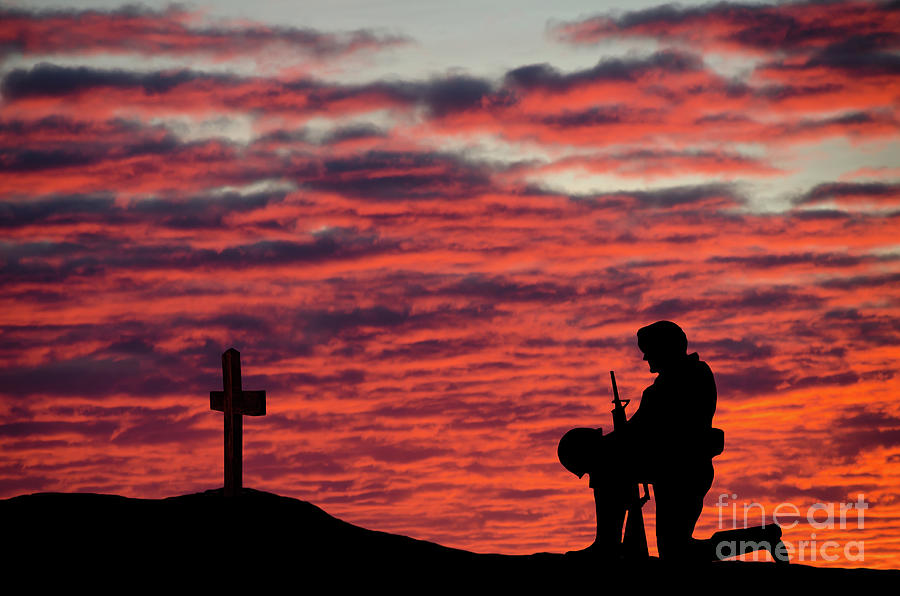 Veterans Day Soldier Photograph by Wwing