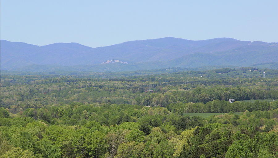 View Of Blue Ridge From The Vineyard 2 by Cathy Lindsey