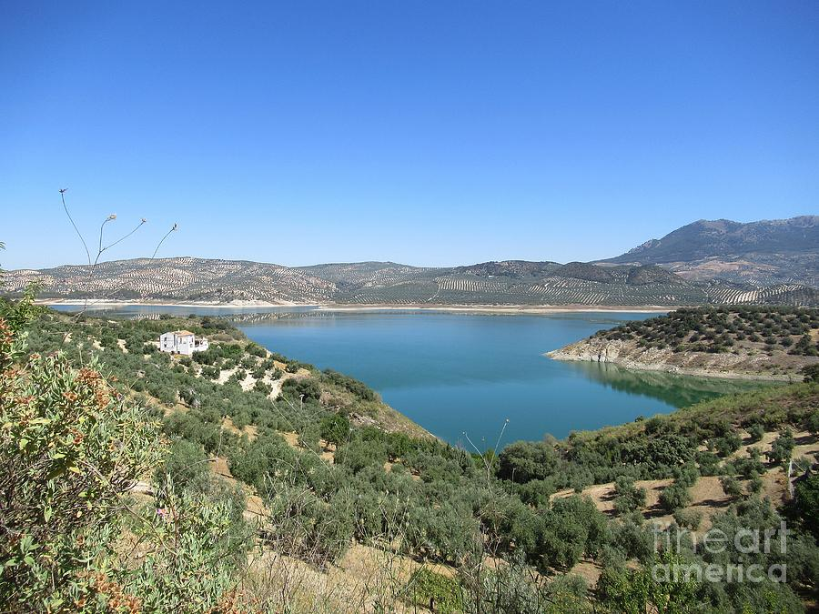 View on the lake near Iznajar by Chani Demuijlder