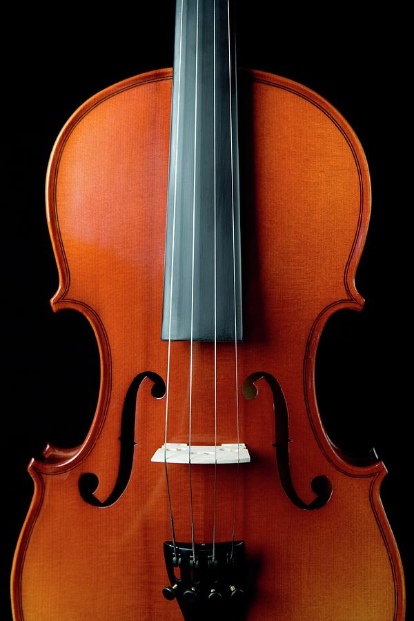 Violin Photograph by Junior Gonzalez