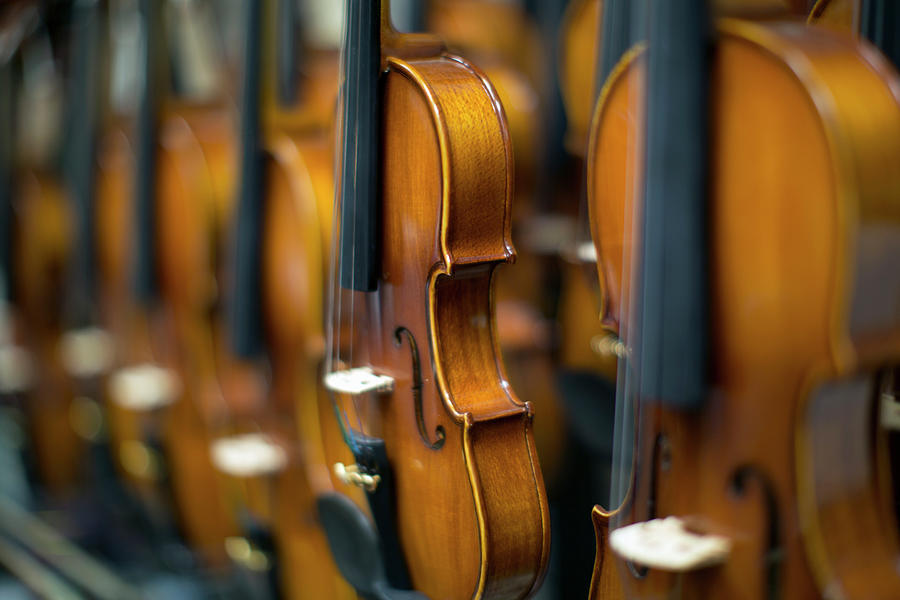 Violins In A Row In A Shop Photograph by Eternity In An Instant
