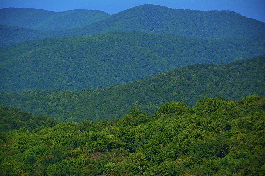 Virginia Blue Ridges by Raymond Salani III