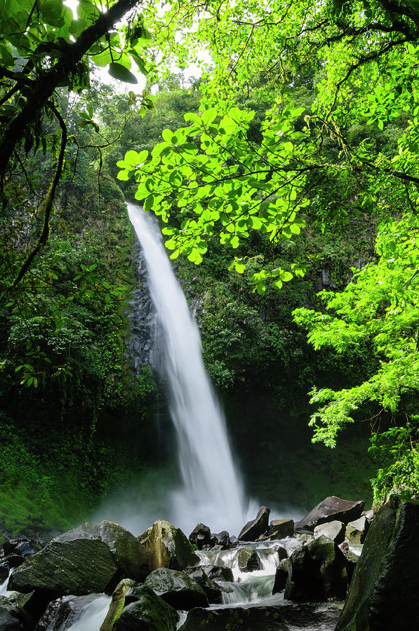 Waterfall In A Tropical Rainforest Photograph by Ogphoto