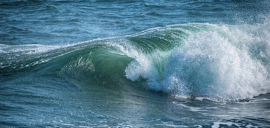 Wave Action by Paul Mangold