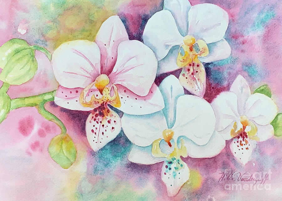 White Orchids by Hilda Vandergriff