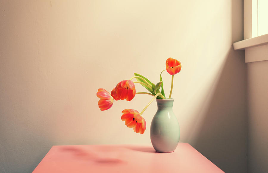 Atmosphere Photograph - Wilting tulips by the window by Natalie Board