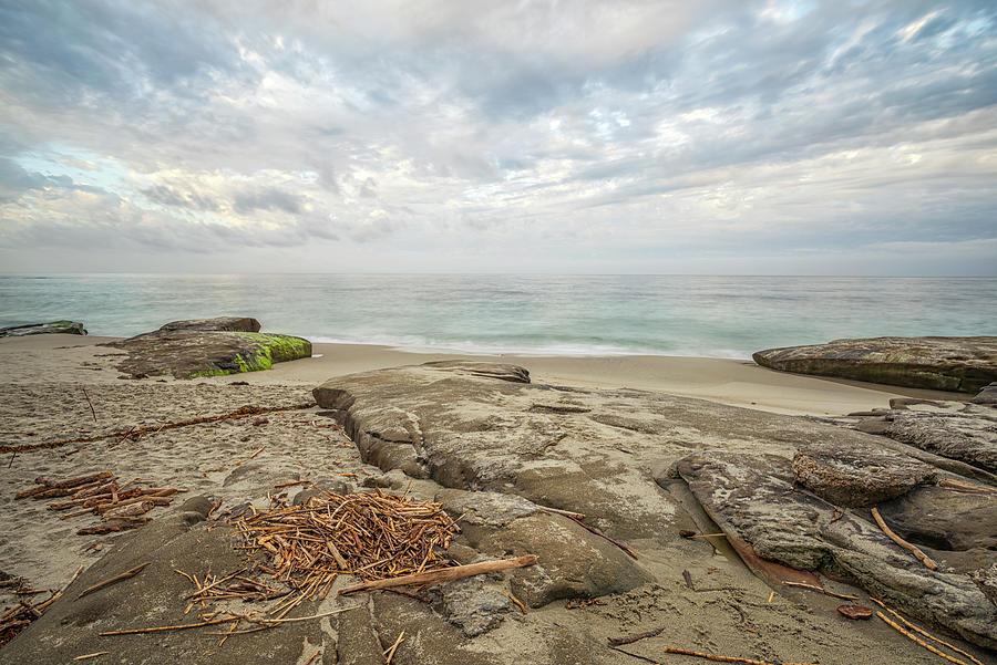 La Jolla Photograph - Windansea Driftwood by Joseph S Giacalone