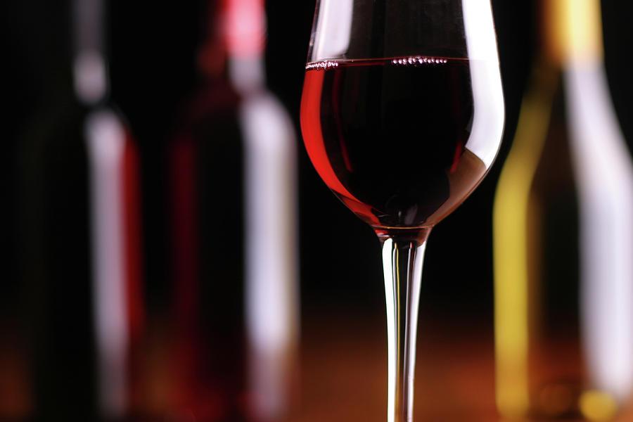 Wine Tasting Photograph by Donald gruener