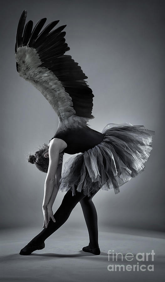 Winged ballerina in monochrome by Catalin Petolea