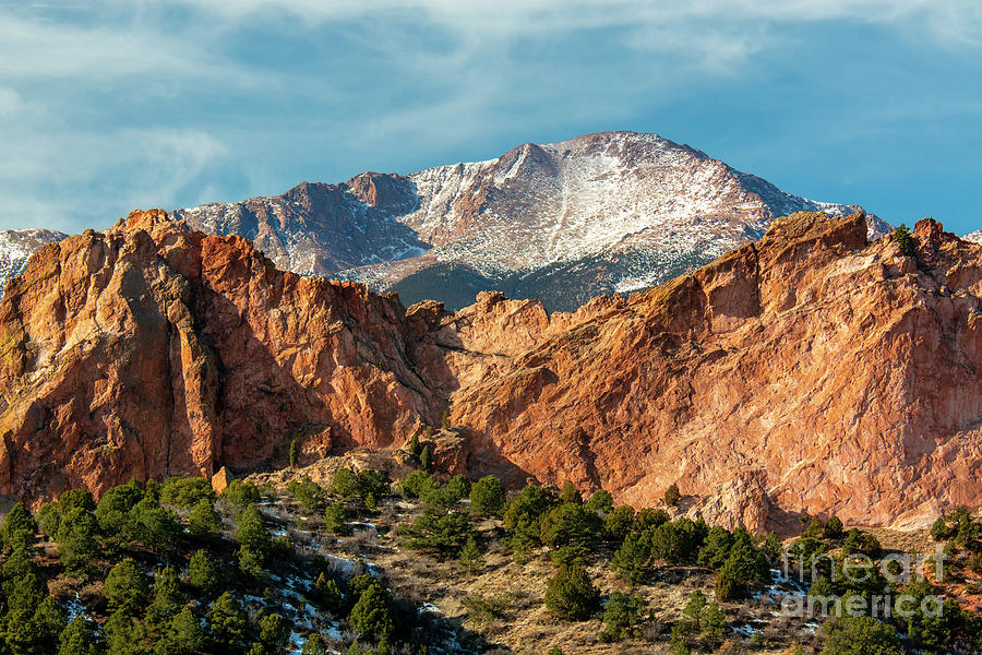 Winter Garden Of The Gods Colorado Photograph