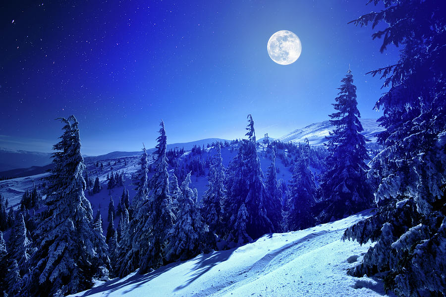 Winter Moon Photograph by Yourapechkin