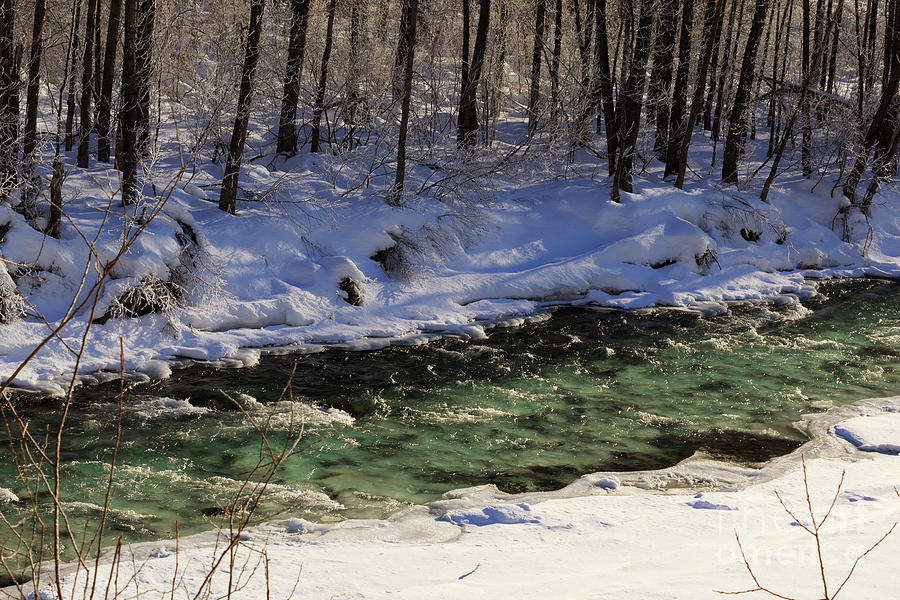 Winter Photograph - Winter Stream Near Hope On The Kenai Peninsula Alaska by Louise Heusinkveld