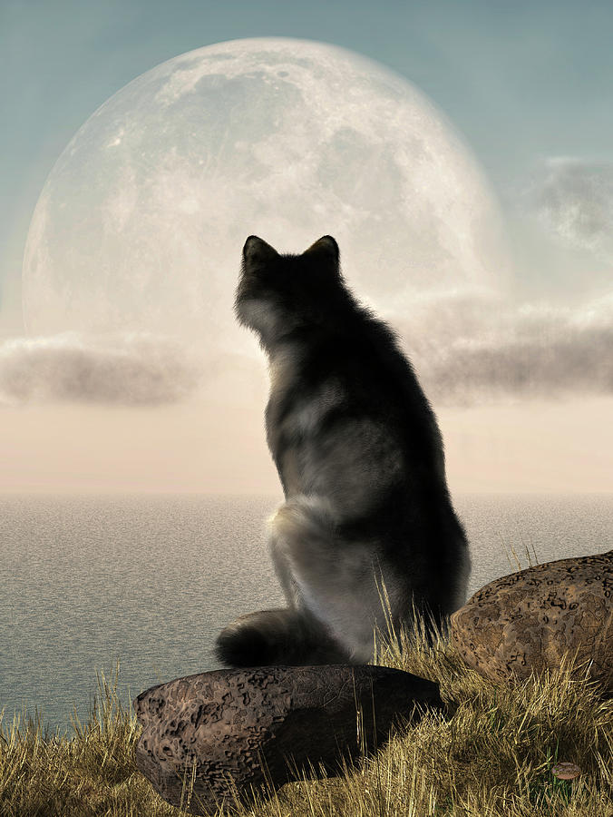 Wolf Painting - Wolf Watching The Moonrise by Daniel Eskridge