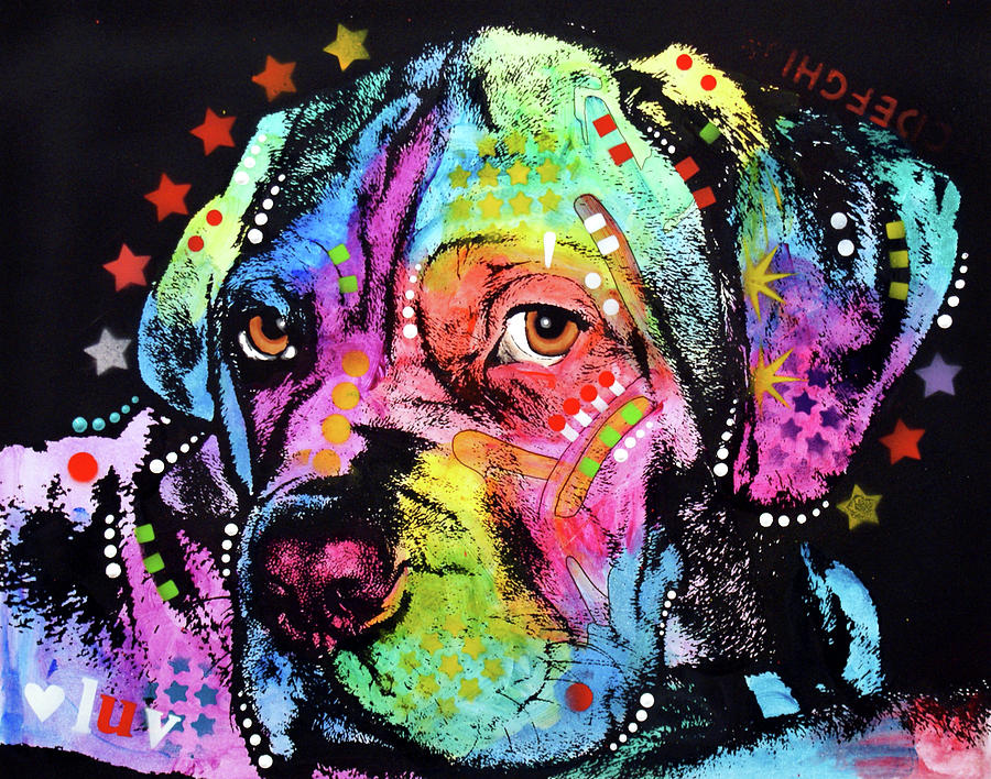 Domestic Dogs Mixed Media - Young Mastiff by Dean Russo
