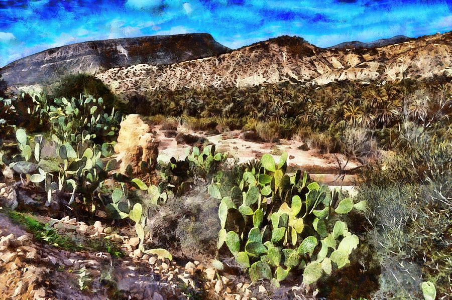 A beautiful landscape in the mountains of Morocco near Agadir by Gina Koch