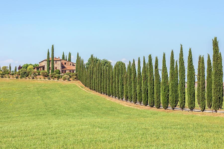 San Quirico, Tuscany - Italy by Joana Kruse