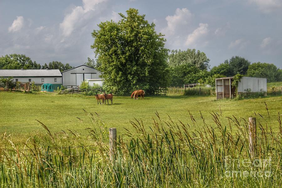 1032 - Hunters Creek Ponies by Sheryl L Sutter
