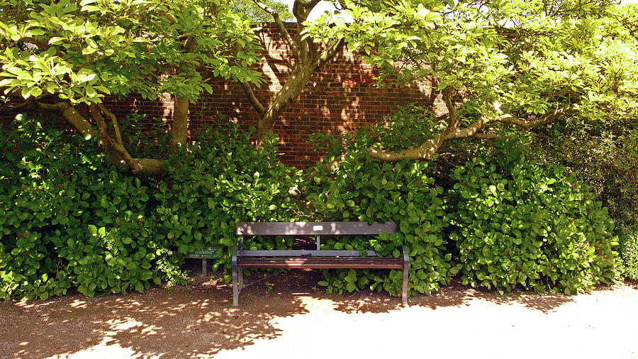 11/05/19 CHORLEY. Astley Hall. Walled Garden. Sunlit Bench. by Lachlan Main