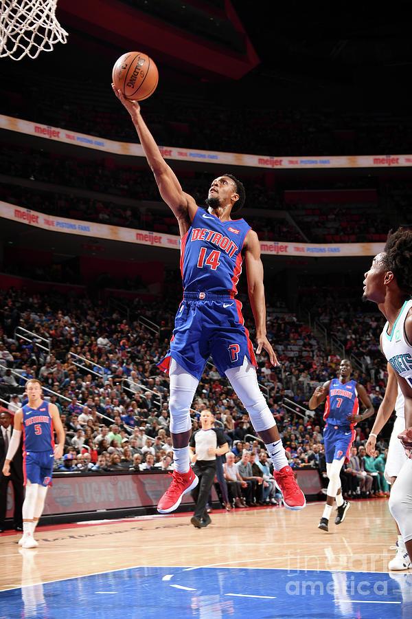 Charlotte Hornets V Detroit Pistons Photograph by Chris Schwegler