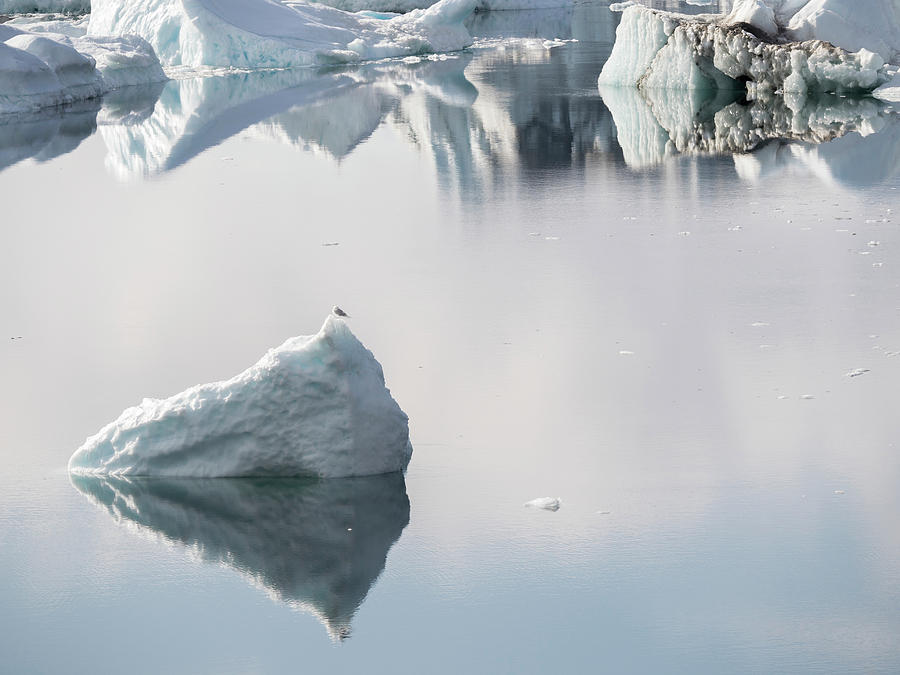 Arctic Photograph - Ilulissat Icefjord, Unesco, Also Called 11 by Martin Zwick