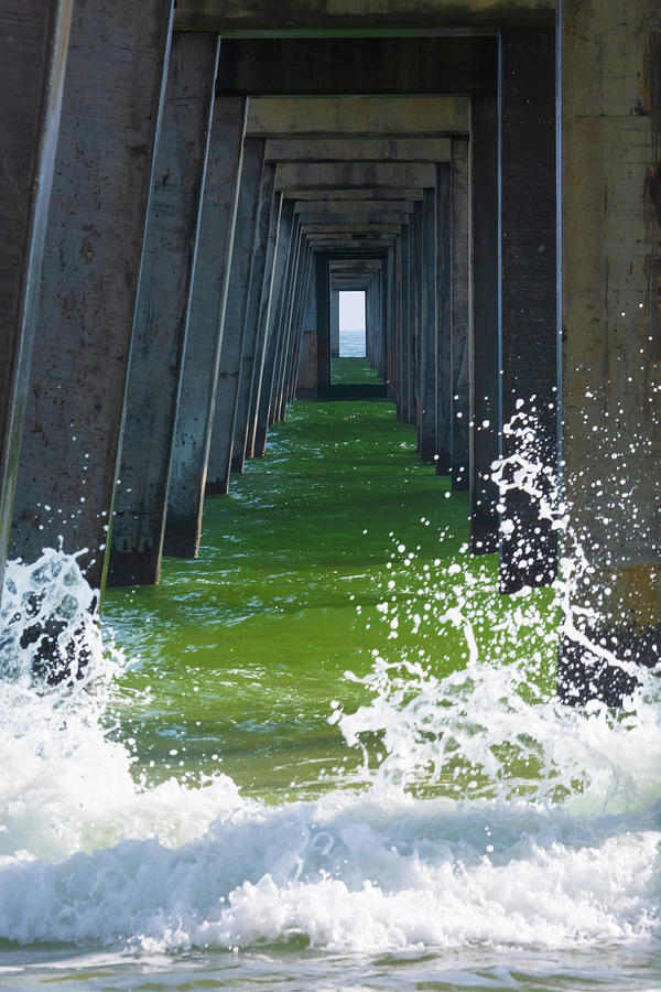 11070 Gulf Shores Pier by Pamela Williams