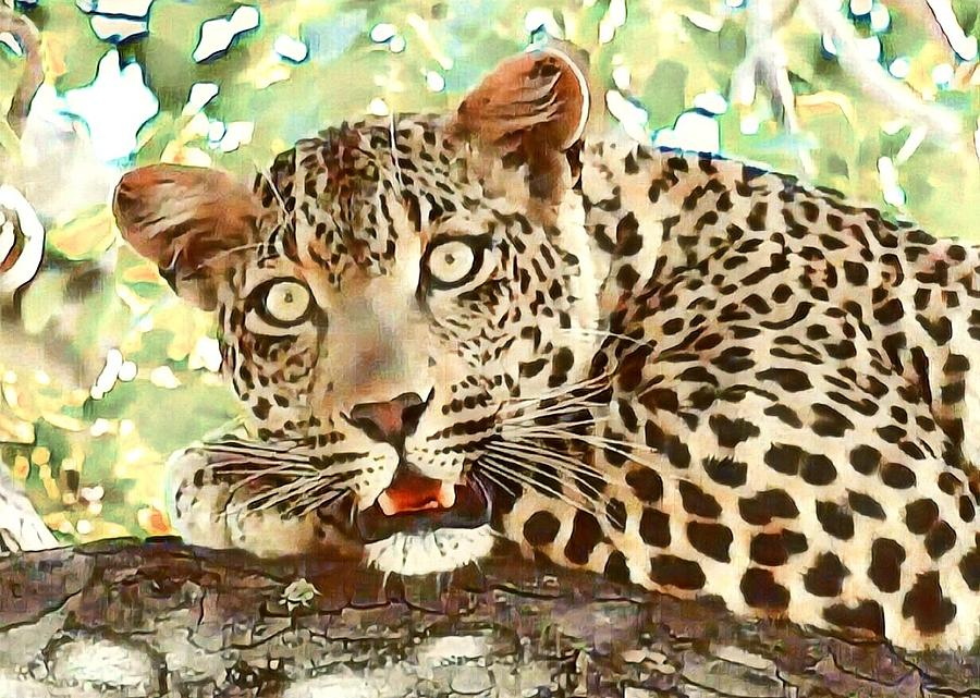 Leopard by Gini Moore