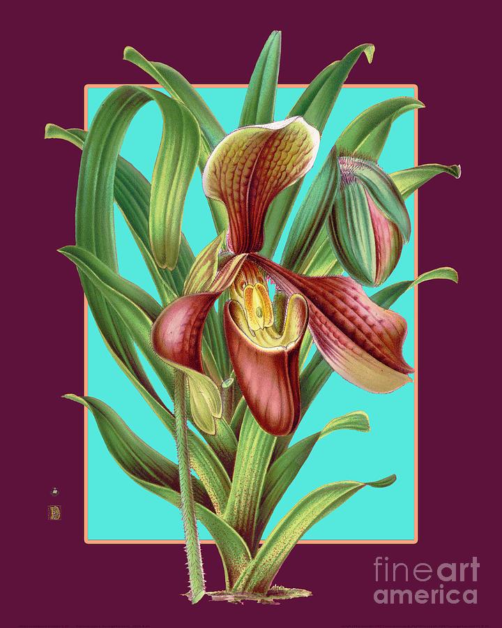 Vintage Orchid Exotic Flower Plant Digital Art