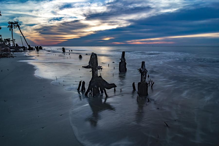 Beautiful nature on hunting island south carolina by ALEX GRICHENKO