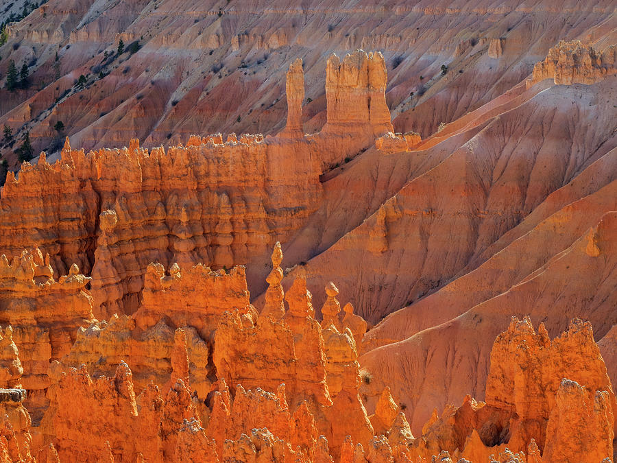 Bryce Canyon Photograph - Utah, Bryce Canyon National Park by Jamie and Judy Wild
